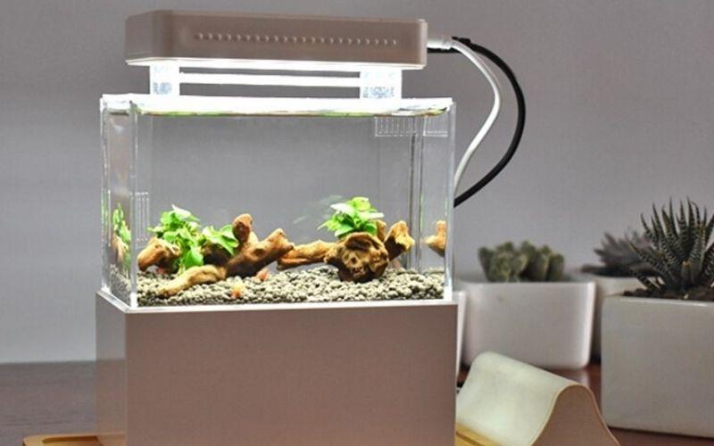 Mini Aquarium Fish Tank Aquarium With LED Lamp Light LCD Display Screen and Clock Fish Tank Desktop Aquarium